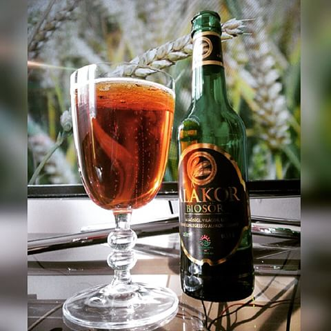 Alakor_sör_pohár_sörrel